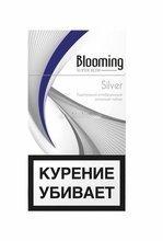 Сигареты blooming silver super slim купить купить табак для кальяна оптом москве