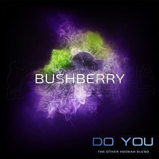 DO YOU BushBerry 50g — фото